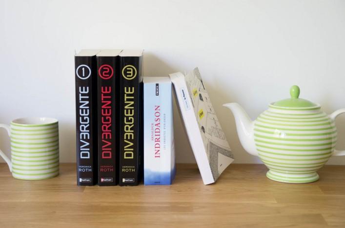 Book club sur la Godiche : les livres le passeur, divergente, la cité des jarres